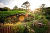 Tauranga Shore Excursion: Hobbiton Movie Set and Rotorua Geothermal...