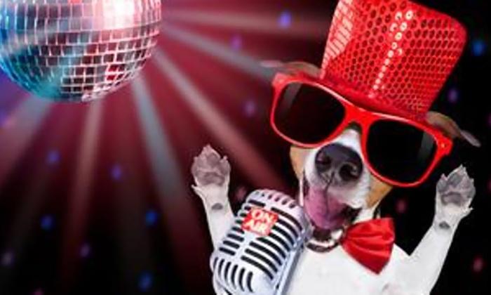 V-Day Drunken Karaoke - Thursday, Feb 14, 2019 / 7:00pm