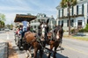 Palmetto Carriage Works - Charleston: Carriage Tour of Historic Charleston