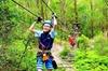 Tree Top Challenge at Currumbin Wildlife Sanctuary