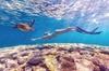 7-Day Exmouth Explorer via Pinnacles Monkey Mia Ningaloo Reef retur...