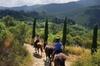Passeggiata a Cavallo in Toscana per Esperti: Cavalcata di Mezza Gi...