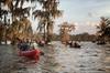 Lake Martin Swamp Tours by Kayak