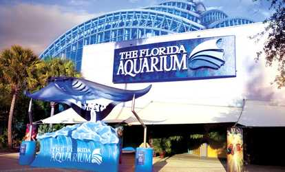 Things To Do In Bradenton Deals On Activities In
