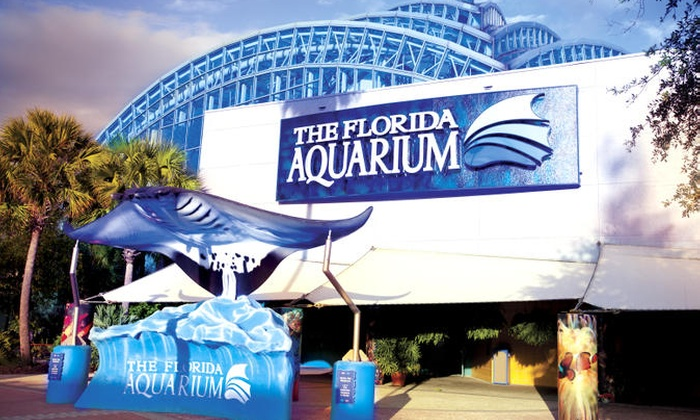 Aquarium Deals: 50 to 90% off deals in Aquarium. Get daily deals and local insights. Seattle Aquarium Parking Deals. Go San Francisco Card: One or Two-Day Pass to 25+ Things to Do, Aquarium of the Bay & More (Up to 55% off gate prices). 8