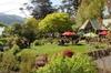 Dunedin Shore Excursion: Sights, Glenfalloch Gardens, Chinese Garde...