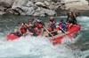 Half Day Whitewater Rafting Trip