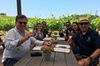 Deliciously Fun Educational Wine Tours in Paso Robles from San Luis...