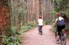 Beyond City Sights E-Bike Adventure Tour
