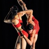 """Backhausdance: """"The Elasticity of the Almost"""" and New Works - Thurs..."""