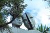 Excursión al Museo Dalí, Figueras y Portlligat para grupos pequeños...