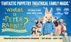 Tickets to see Where is Peter Rabbit?