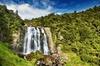 Waitomo Caves Tour - Auckland Tour House