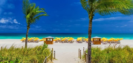 ✈ FLORIDA | Miami Royal Palm South Beach Miami, a Tribute Portfolio Resort 4* Oceanfront