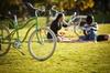 Recorrido en bicicleta en Sevilla con picnic