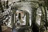Degustazione enogastronomica privata nella campagna romana con part...