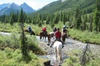 Banff Trail Riders - Calgary: Horseback-Riding Tour in Banff with BBQ Lunch
