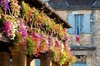 Excursion d'unedemi-journée dans les villages de la Dordogne