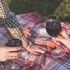 Wine and Vineyard Tour