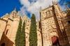 Visita privada a Ávila y Salamanca desde Madrid