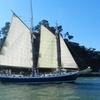 Sunday Morning Eco-Sail to the Marin Headlands - Sunday, Feb. 18, 2...