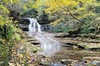 Guided 2 Mile Hike Through Kentucky Palisades and the Boone Creek G...