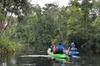 Amelia Island Area Self Guided Kayaking