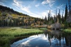 Salt Lake City Guided Tours - Salt Lake City: Half-Day Wasatch Mountain Tour From Salt Lake City