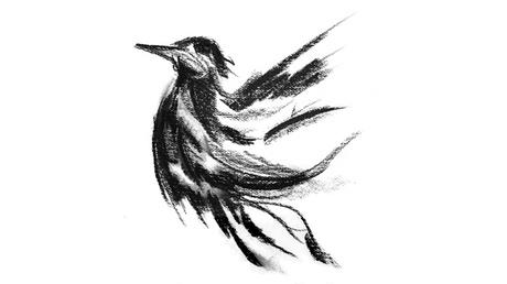Blackbird bf042e88-157c-43cf-82a2-0095a0a92dd2