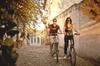 Recorrido en bicicleta eléctrica en grupo pequeño de Granada