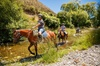 2.5hr Horse Trek