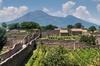 Pompei e Vesuvio: Tour di un giorno con biglietti inclusi