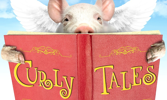 Empire Stage - Lake Ridge: Curly Tales at Empire Stage