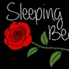 "Ocean Beach Playhouse Youth Theatre Camp: ""Sleeping Beauty"" - Mon -..."