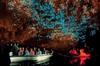 Hobbiton Movie Set and Waitomo Glow Worm Caves