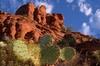 Sedona Red Rocks Jeep Adventure