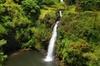 Hana, Waterfalls, Black Beach & Turtles Tour from Kahului