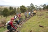Mountain Bike Day Tour, 2 locations, 4 hrs riding, Holgate's Brewer...