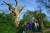 Eight Day Tour of Sacred England