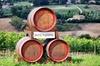 Tour di Degustazione del Vino Chianti Classico da Pisa