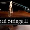 Envisioned Strings II