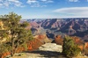 Grand Canyon and Sedona Day Tour from Phoenix - Lunch Included