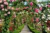 Private Butchart Gardens Tour
