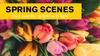 "CIM Opera Theater: ""Spring Scenes"" - Saturday, Apr 27, 2019 / 3:00pm"