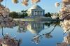 8:00 AM Washington DC Tour