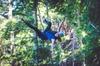 Zipline Combo with Dart River Wilderness Jet from Queenstown