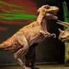 """""""Erth's Dinosaur Zoo Live!"""" - Friday February 10, 2017 / Noon"""
