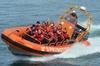 SpringTide Whale Watching  Tours - Victoria: Marine Wildlife Tour by Zodiac
