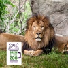 """Brew at the Zoo"" - Saturday, Aug 18, 2018 / 3:30pm-7:30pm"