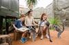 Adelaide Zoo Behind the Scenes Experience Ticket - Lemur Feeding